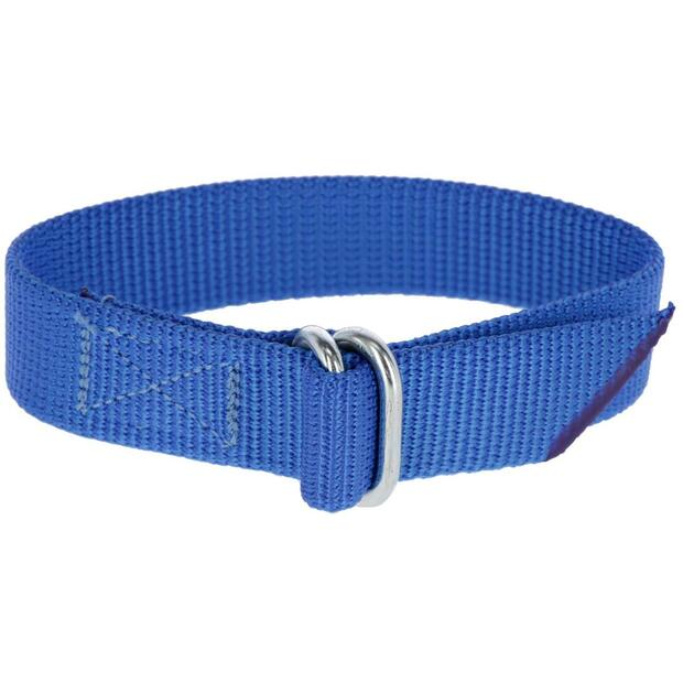 Fetlock Strap for Leg Band Numbers blue
