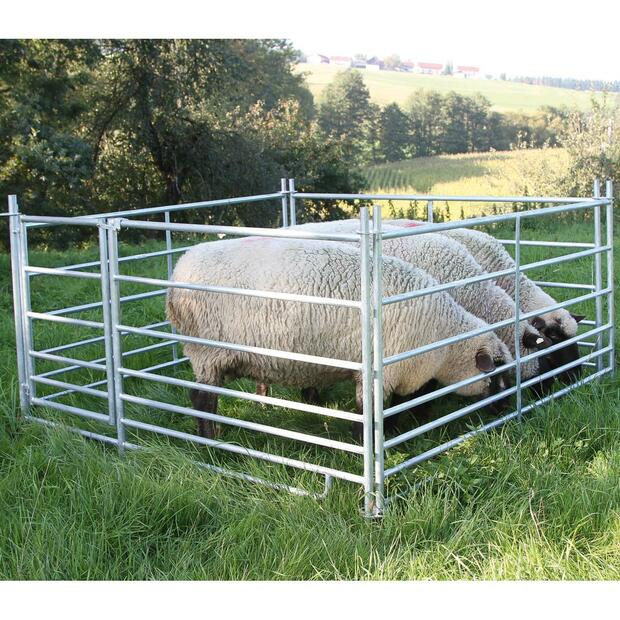 4x Sheep panel with feeding device 2,75 m x 92 cm, with door
